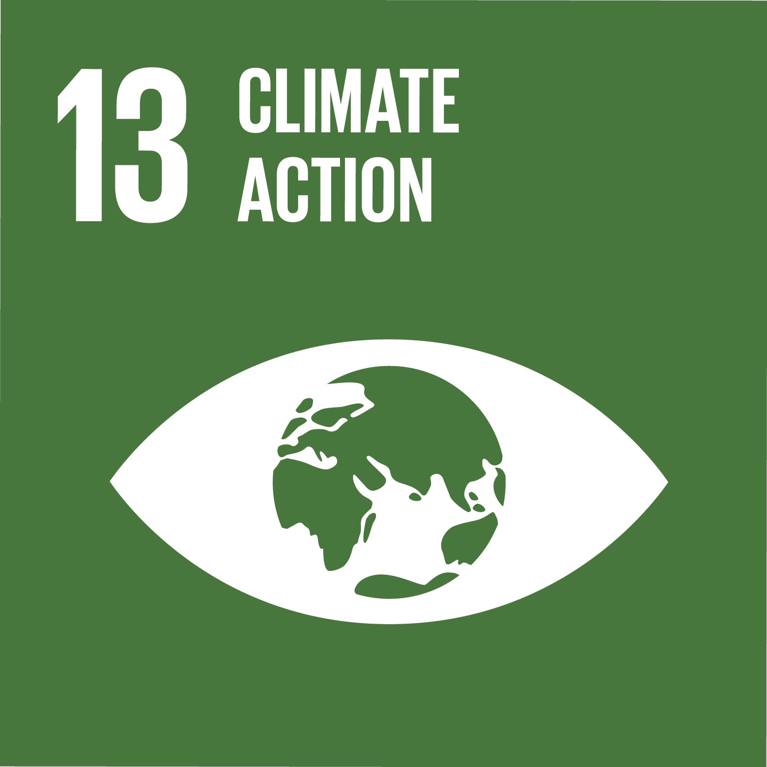 E_SDG-goals_icons-individual-rgb-13.png